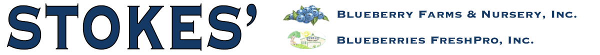 Stokes' Blueberry Farms & Nursery, Blueberries FreshPro